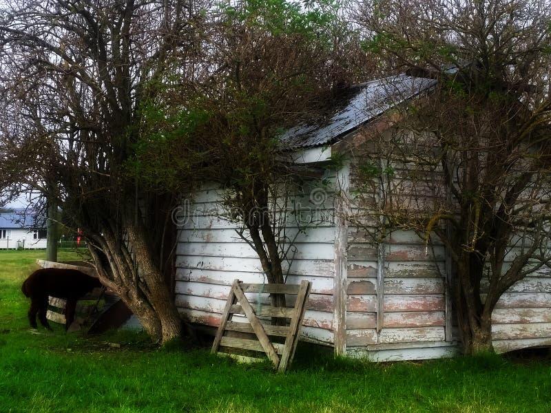 w domu stary rolnych obraz stock
