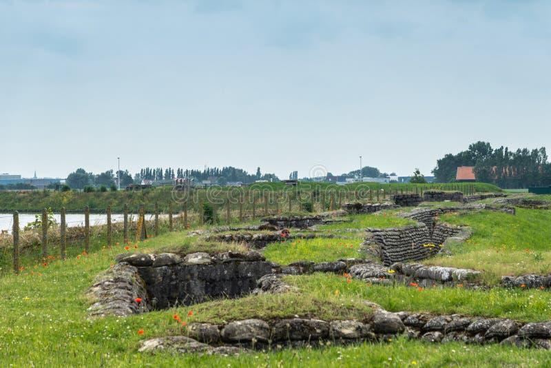 W Flandryjskich polach maczka cios, Diksmuide, Flandryjski, Belgia fotografia stock