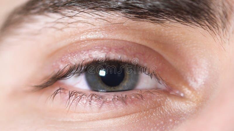 W górę ludzkich oczu Piękny oko młody człowiek z uczniem kurczy się od światła Ludzkiego oka brązu i szarość cień z zdjęcia stock