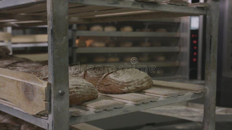 W górę świeżo piec chleba przy piekarnią scena Nowy piec wsad chlebowy stawiający na półce Świeży wypiekowy pojęcie obraz stock