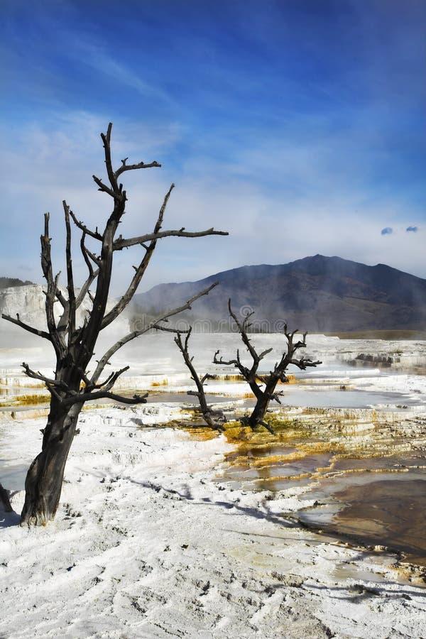 w górę biel suszarniczy geotermiczny jezioro obrazy stock