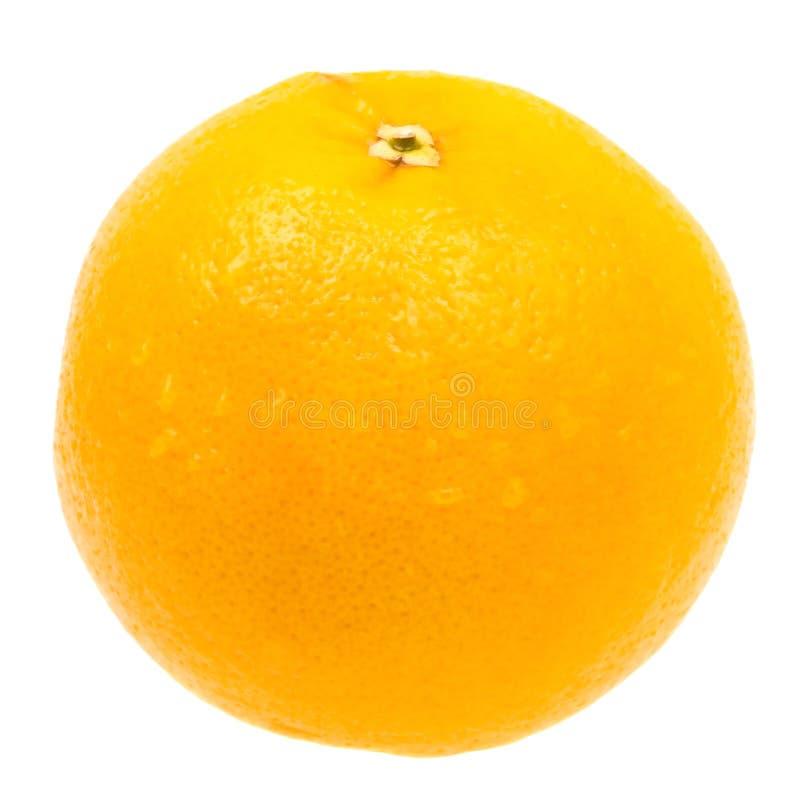 w górę biel zamknięta świeża odosobniona pomarańcze fotografia royalty free