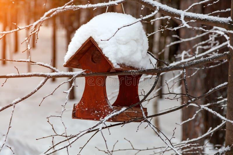 W górę drewnianego birdhouse ptasiego dozownika zakrywającego z wielką warstwą śnieg na jasnym zima dniu w lesie zawieszającym od zdjęcie royalty free
