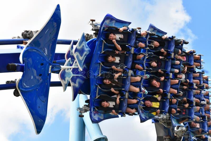 W górę ludzi cieszy się rozrywkową manty Ray kolejkę górską, Seaworld park tematyczny zdjęcia royalty free
