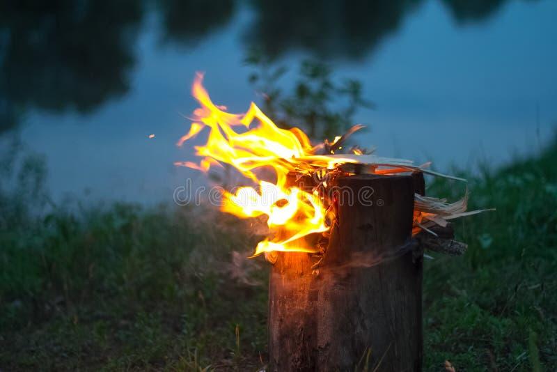 W górę płonącego ogniska w lesie, łupce i embers na ogieniu rzeczną, selekcyjną ostrością, obraz royalty free