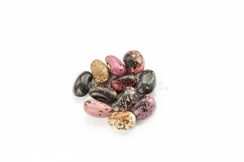 W górę widoku surowe mieszane fasole na białym tle Mieszanka menchii, czerni, czerwieni i brązu fasole, zdjęcia royalty free