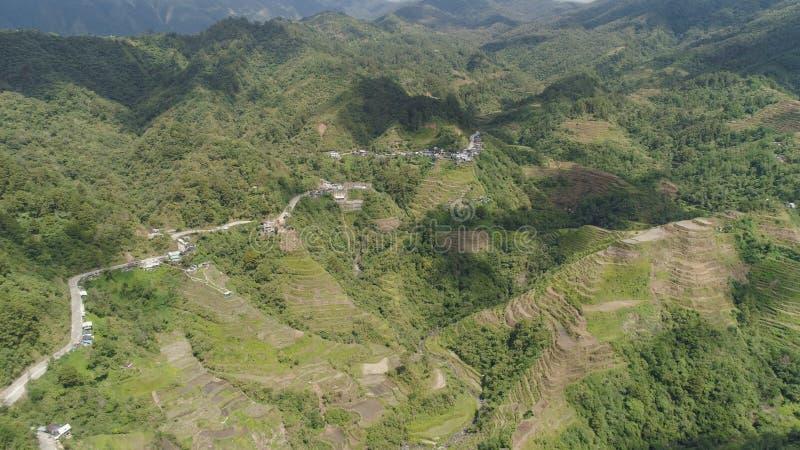 W górach ryżowi tarasy Filipiny, Batad, Banaue fotografia royalty free