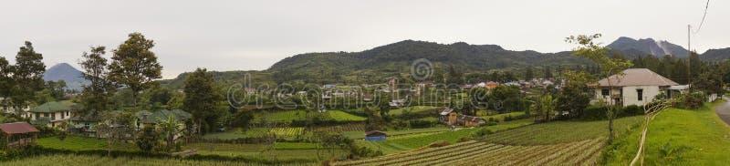 W Gundaling jarzynowi gospodarstwa rolne, Brastagi, Indonezja zdjęcia royalty free