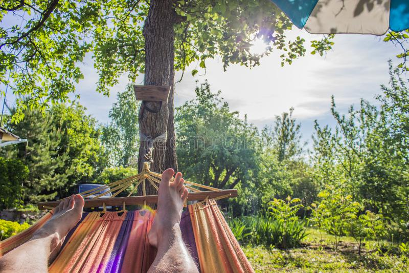 W hamaku na słonecznym dniu zdjęcie royalty free