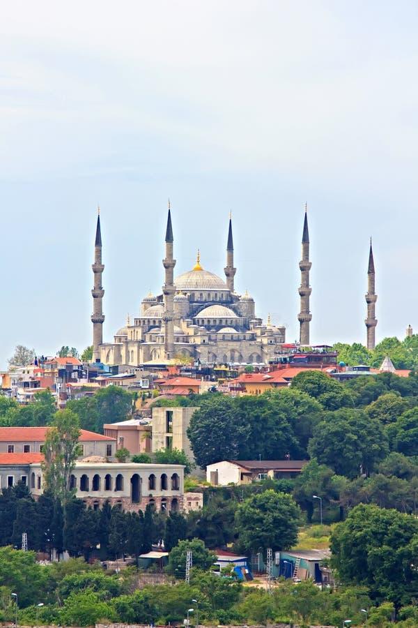 W Istanbuł błękitny Meczet fotografia royalty free