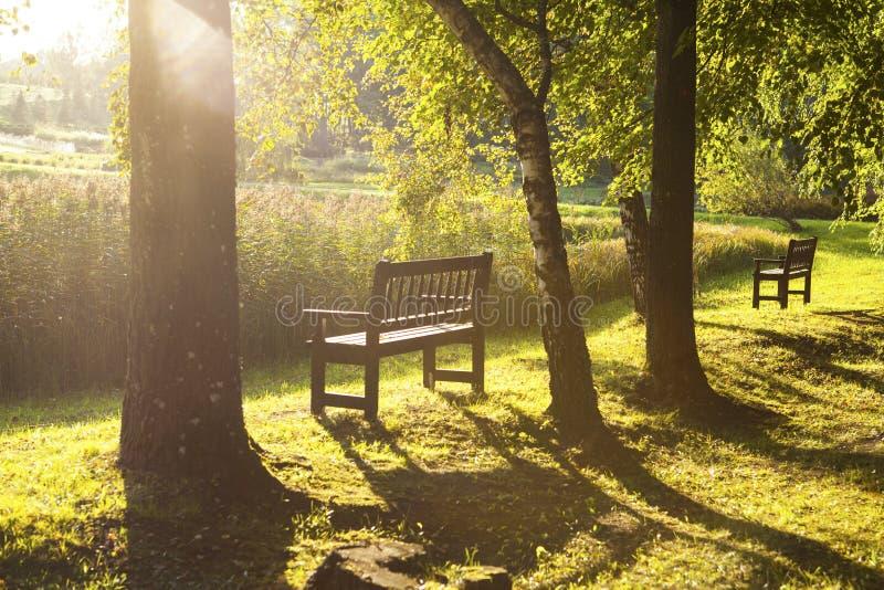 W jesień parkowa ławka zdjęcie royalty free
