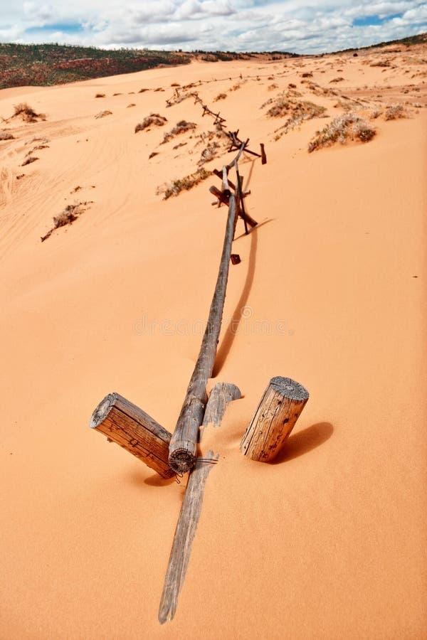 W Koralowym Różowym piasek diuny parku narodowym obrazy stock