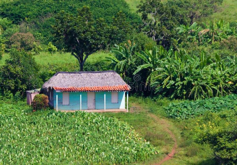W kubańskiej wsi typowy dom obraz stock