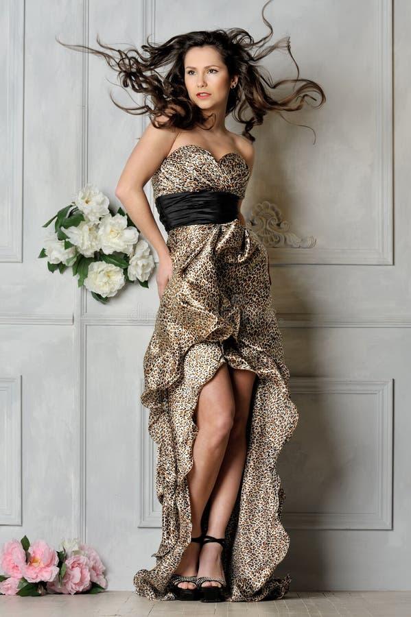 W lampart długiej sukni piękna kobieta. zdjęcia royalty free