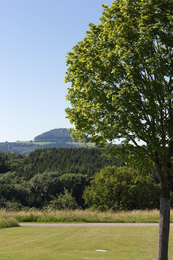W lato wiejski krajobraz zdjęcia royalty free