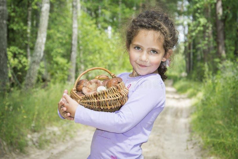 W lecie w drewnach troszkę zbierał kosz m dziewczyna zdjęcie stock