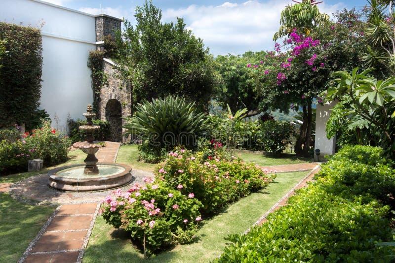 Download W mieście, Meksyk, Meksyk zdjęcie stock. Obraz złożonej z roślina - 41955588