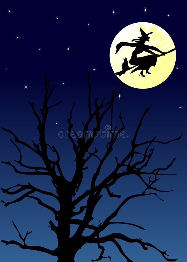 w noc halloween. obraz stock