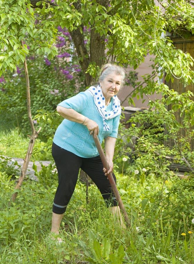 W ogródzie stara dama obrazy royalty free