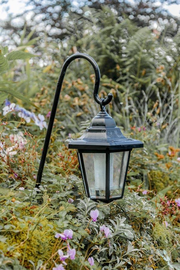 W ogródzie wiszący światło obraz stock