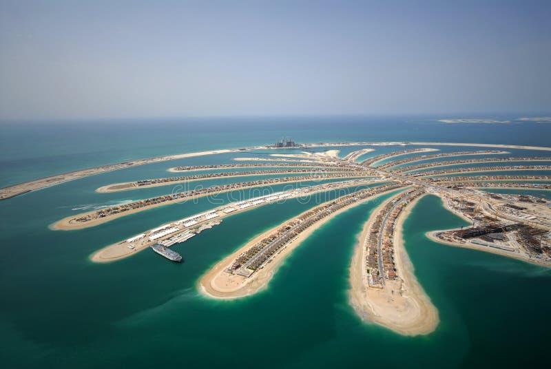 w ' palmie ' jumeirah zdjęcia royalty free