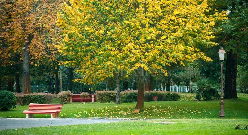 W parku czerwona ławka zdjęcia royalty free