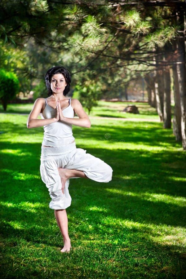 W parku drzewna joga poza zdjęcie stock