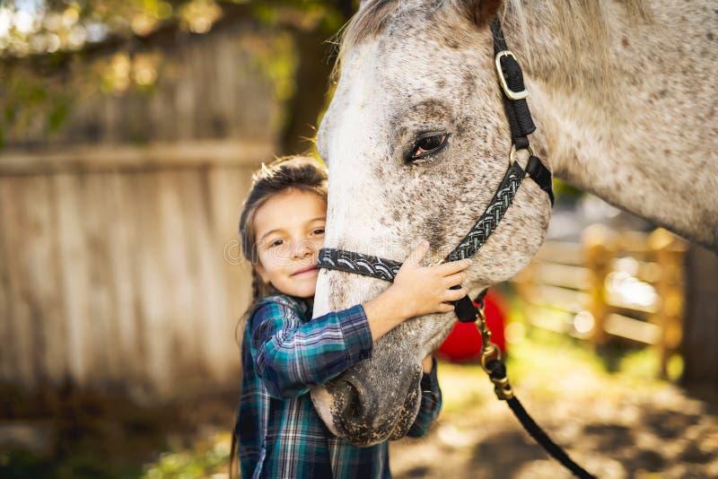 W pięknym jesień sezonie koń i młoda dziewczyna obraz royalty free