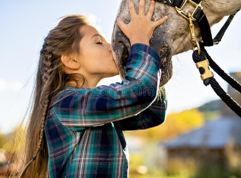 W pięknym jesień sezonie koń i młoda dziewczyna obrazy stock