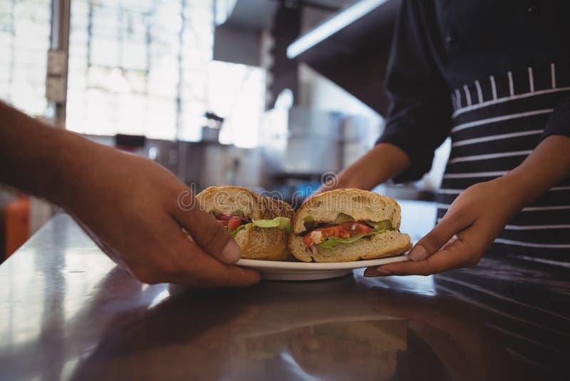 W połowie sekcja daje talerza z kanapkami coworker kelnerka fotografia royalty free