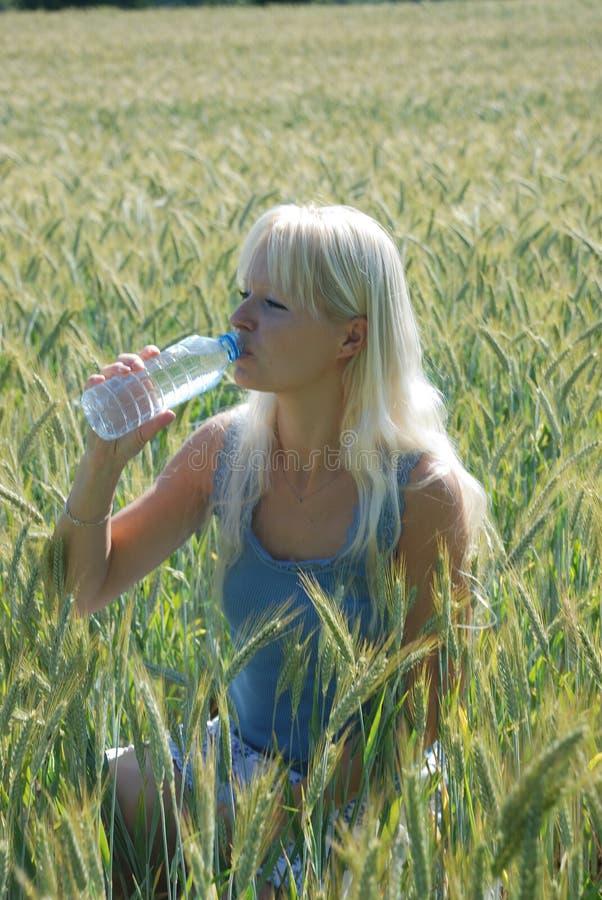 W polu blond kobieta zdjęcie stock