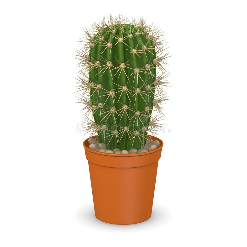 W pot13 kaktusowy kwiat ilustracji