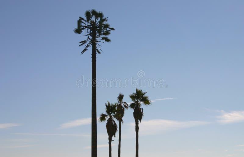 w przypadku korzystania z przebierał wieży drzewa palmowego telefonu obrazy stock