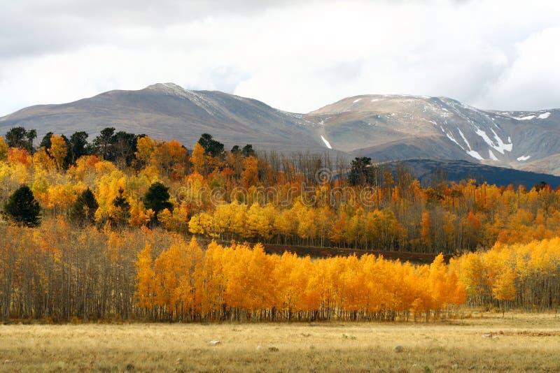 W Rockies Jesień zimny Dzień zdjęcie stock
