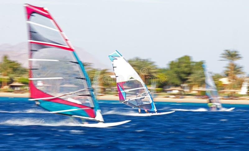W ruchu trzy windsurfers zdjęcia stock