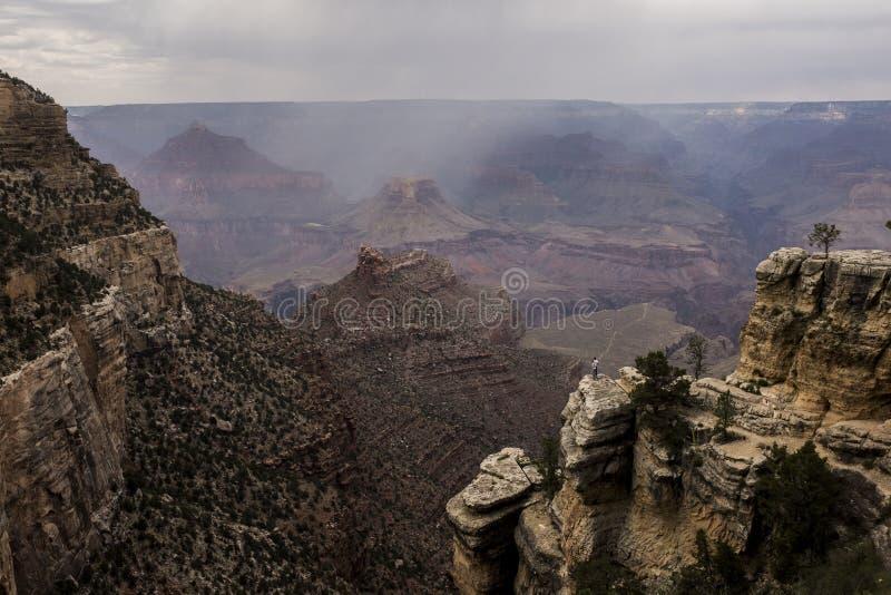 W spojrzeniu w za Grand Canyon obrazy stock