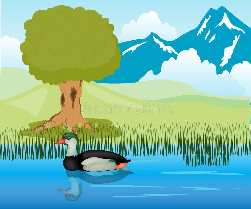 W stawie kaczka żagle ilustracji