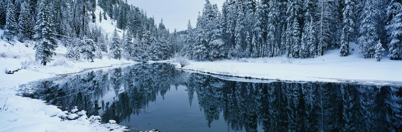W Tahoe Jeziornym terenie śnieżna scena, CA obrazy royalty free