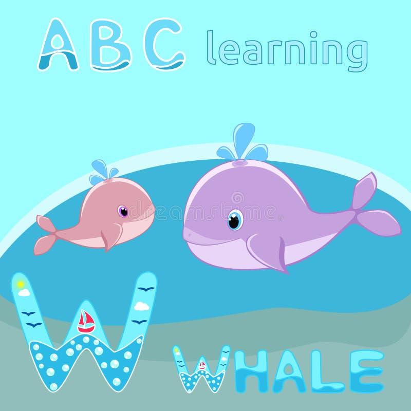 W is voor de walvis van de Walvisbaby met van het de illustratie Leuke beeldverhaal van de waterplons vector de walvisvector vector illustratie