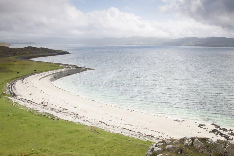 W Waternish koralowe Plaże; Wyspa Skye fotografia royalty free
