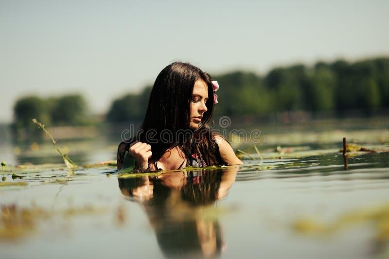 W wodzie brunetki seksowna kobieta obraz royalty free