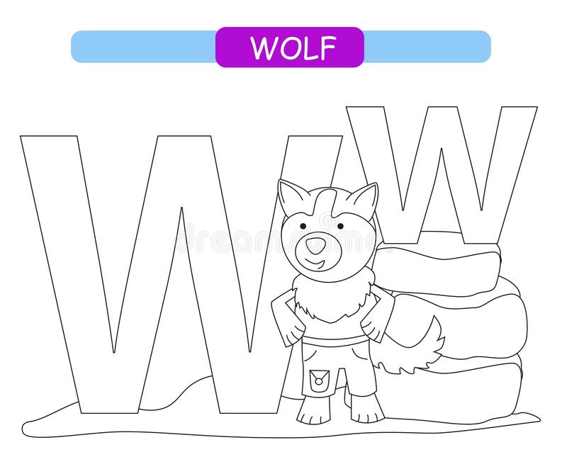 Letter W and funny cartoon wolf. Coloring page. Animals alphabet a-z. Cute zoo alphabet in vector for kids learning English vocabu royalty free illustration