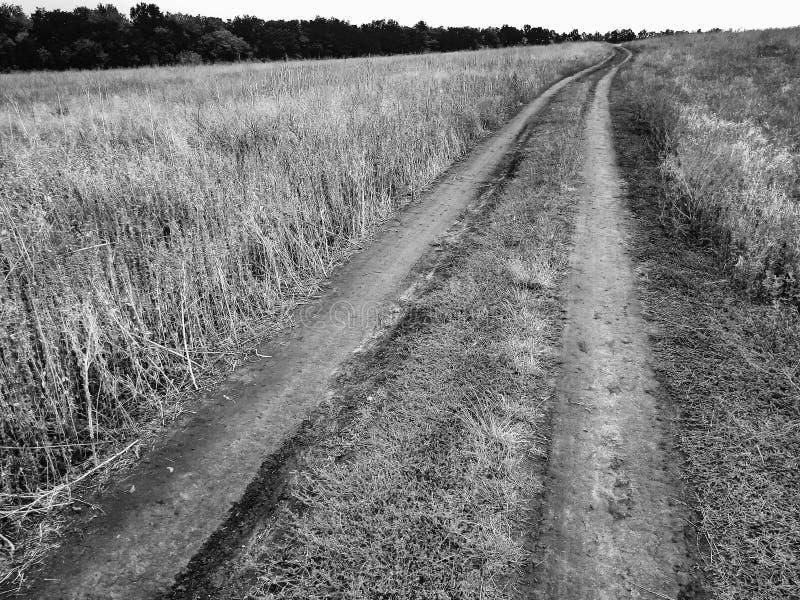 W wsi wiejska droga fotografia royalty free