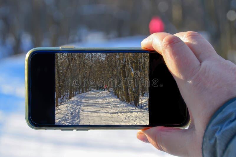 W zima lesie, obrazek ekran smartphone fotografować obrazy royalty free