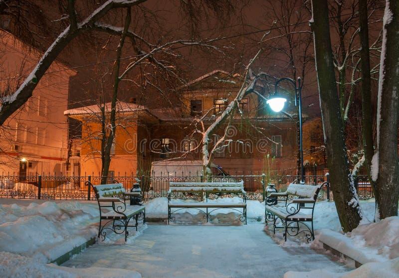 W zima parku zdjęcia stock