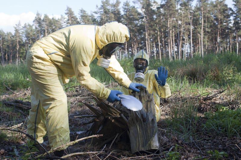 Waarschuwing over straling in bos stock fotografie