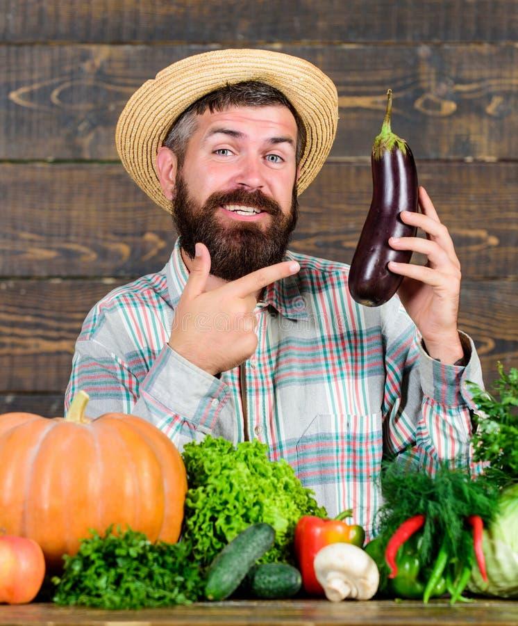 Wachsen Sie organische Ernten Selbstgezogenes biologisches Lebensmittel Mann mit hölzernem Hintergrund des Bartes Organisches Gar lizenzfreies stockfoto