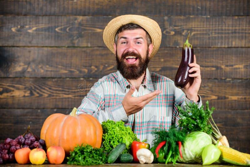 Wachsen Sie organische Ernten Selbstgezogenes biologisches Lebensmittel Mann mit h?lzernem Hintergrund des Bartes Landwirt mit or stockfotografie