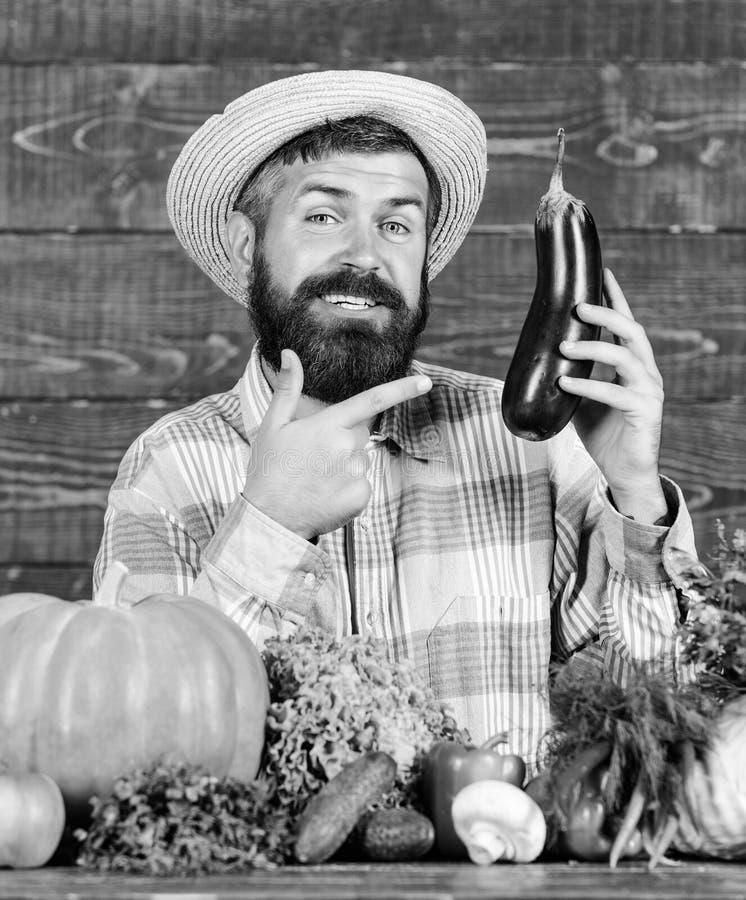 Wachsen Sie organische Ernten Selbstgezogenes biologisches Lebensmittel Mann mit h?lzernem Hintergrund des Bartes Organisches Gar lizenzfreie stockfotografie