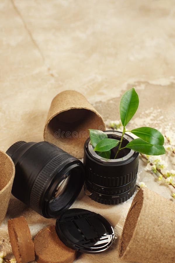 Wachsende Grünpflanzen in benutztem altem der FotoKameraobjektiv und Wiederverwendung bereiten eco Konzept auf stockbild